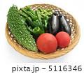 夏野菜 5116346