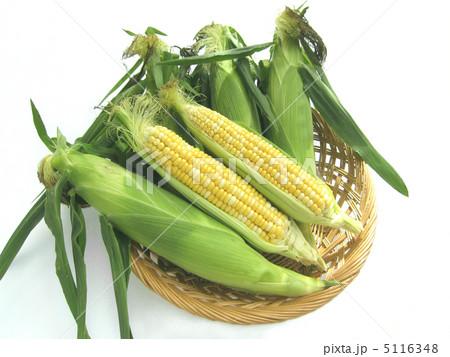 トウモロコシ 5116348