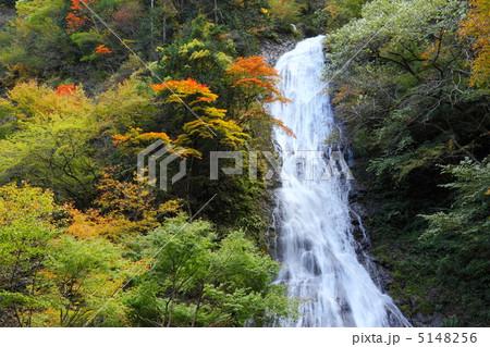 101103-05 丸神の滝 5148256