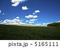 夏の麦畑 5165111