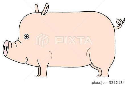 豚 5212184