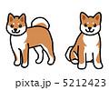 小型犬 シバイヌ 柴犬のイラスト 5212423