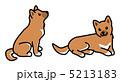 シバイヌ しば犬 柴犬のイラスト 5213183