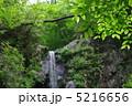愛鷹山つるべ落としの滝 5216656
