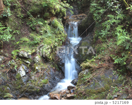 小さな滝 5217169