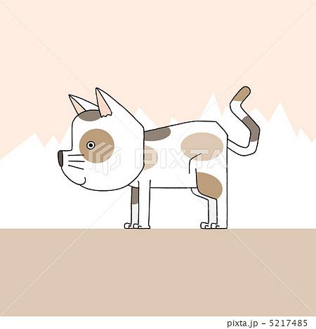 三毛猫 5217485