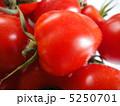 トマトベリー 5250701
