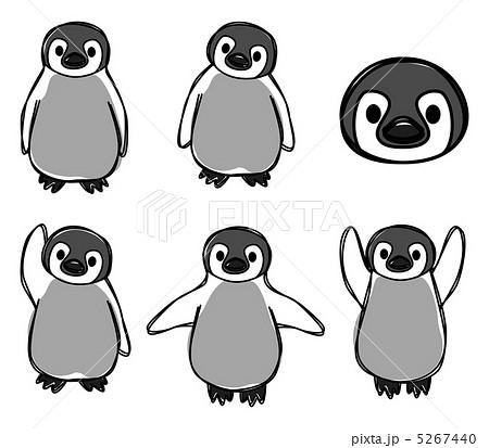 ペンギンさんのイラスト素材 [5267440] , PIXTA