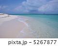 ビンタン島のビーチ 5267877