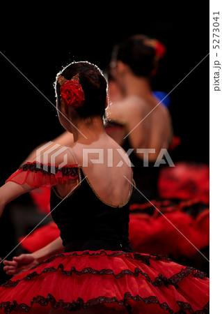 クラシックバレエ 5273041