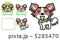 小型犬 子犬 パピヨンのイラスト 5283470