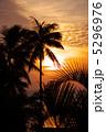 夕焼けとヤシのシルエット 5296976