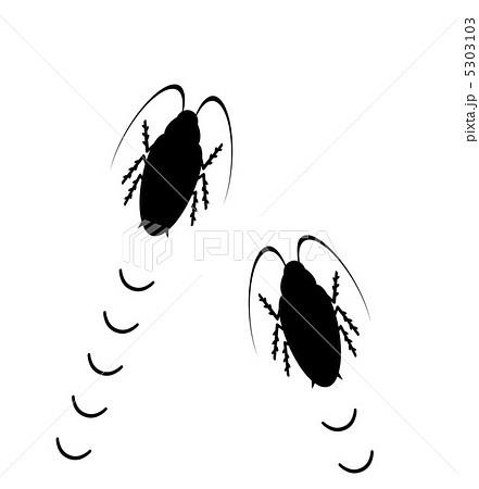 徘徊するゴキブリのイラスト素材 5303103 Pixta