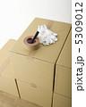 引っ越し 梱包 荷造りの写真 5309012