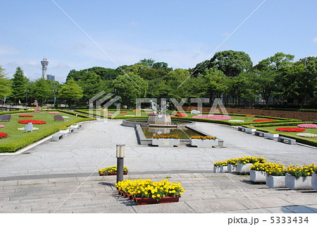 大阪市の天王寺公園です。(背景に見えるのは通天閣)園内には天王寺動物園もあります。 5333434