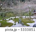 庭石 日本庭園 石の写真 5333851