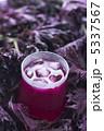 赤ジソ シソジュース 赤シソの写真 5337567