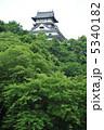 平山城 白帝城 犬山城の写真 5340182
