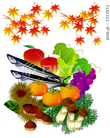 秋の味覚のイラスト素材 5353651 Pixta