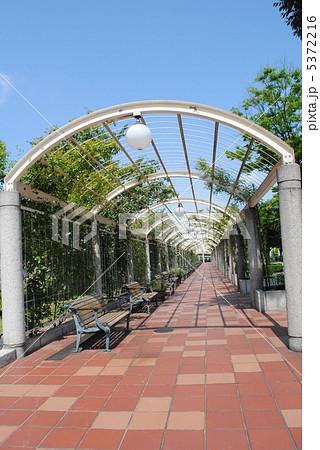 大阪市の天王寺公園の長く続くベンチです。広々とした園内には天王寺動物園もあります。 5372216
