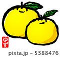 柚 ユズ 柚子のイラスト 5388476