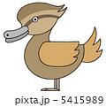 アイガモ 合鴨 鳥のイラスト 5415989