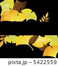 ベクター イチョウ 葉のイラスト 5422559