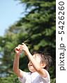 夏休み 男の子  5426260