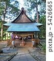 唐松神社 社殿 神社の写真 5426665