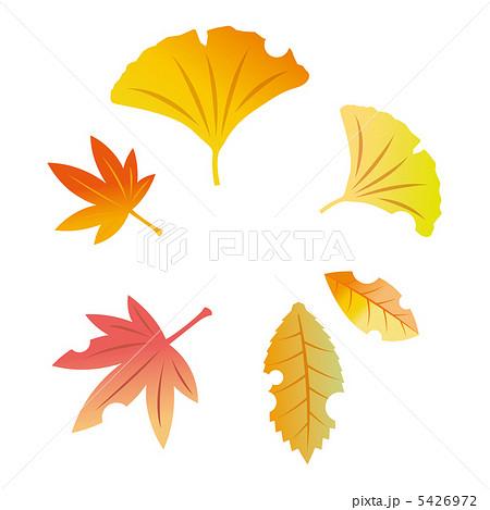 木の葉のイラストのイラスト素材 5426972 Pixta