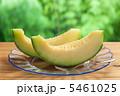 アンデスメロン 果物 メロンの写真 5461025