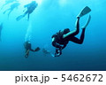 スキューバダイビング ダイバー ダイビングの写真 5462672