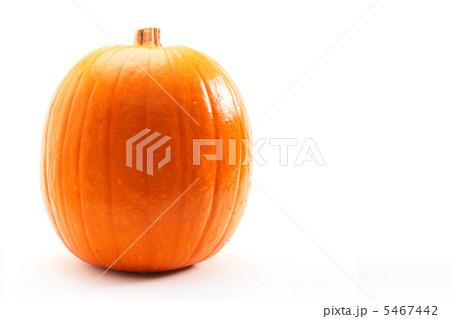 ハロウィン洋かぼちゃ 5467442
