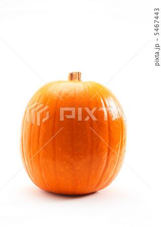 ハロウィン洋かぼちゃ 縦 5467443
