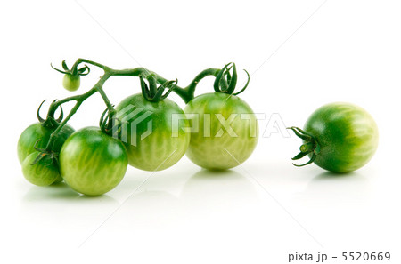 Bunch of Ripe Yellow and Green Tomatoes Isolated on Whiteの写真素材 [5520669] - PIXTA