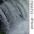 マス 滝登り さくらの滝の写真 5529062