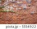 レンガ壁 煉瓦壁 れんが壁の写真 5554922