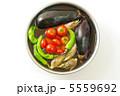 夏野菜 唐辛子 ミョウガの写真 5559692
