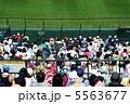 観戦 外野席 野球観戦の写真 5563677
