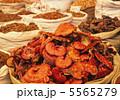 レイシ 霊芝 キノコの写真 5565279
