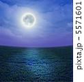 原っぱ お月様 月のイラスト 5571601