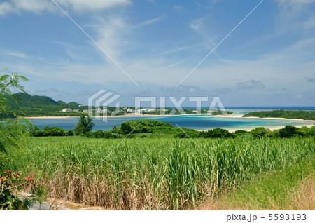 石垣島 川平湾を望む風景 5593193