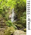 夏の払沢の滝。 5593581