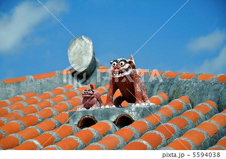 赤瓦屋根のシーサー 5594038