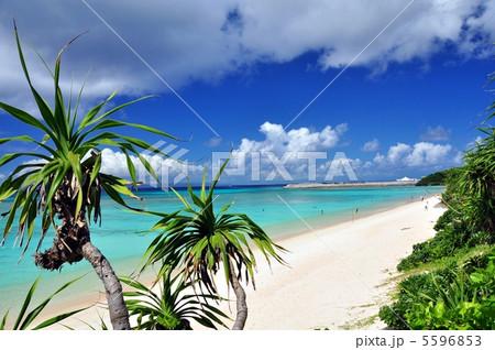 波照間島 コバルトブルーの海ニシハマ 5596853