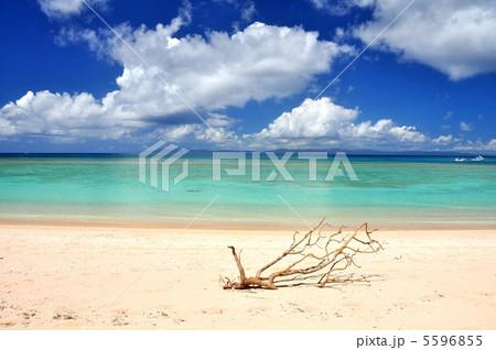 波照間島 コバルトブルーの海ニシハマ 5596855