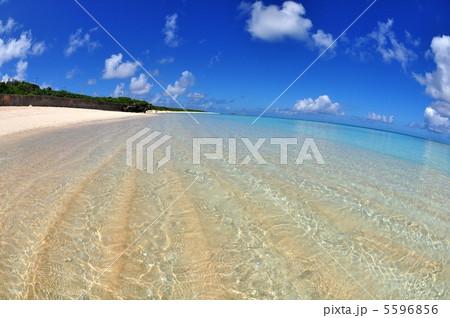 波照間島 コバルトブルーの海ニシハマ 5596856