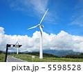 夏の伊豆稲取風車展望台 5598528