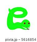 蛇 5616854
