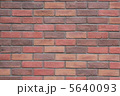 煉瓦壁 レンガ塀 レンガ壁の写真 5640093